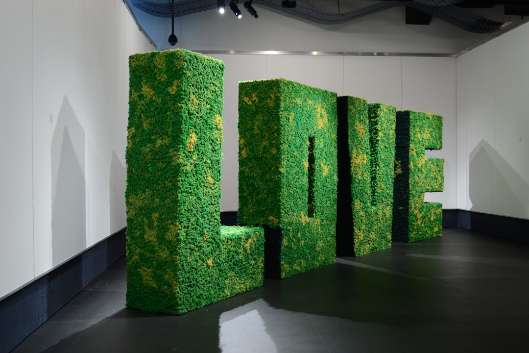 Installation view, Dancing with wools, 2012