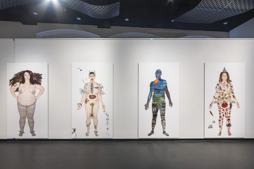 Installation view, Deborah Kelly: No human being is illegal (in all our glory), 2018