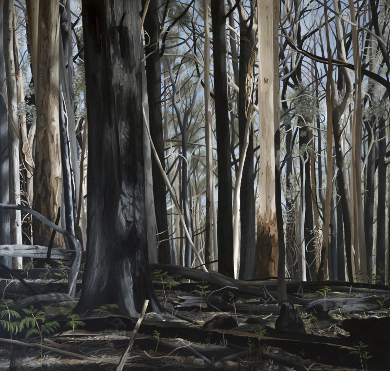 Victoria Watts, Mt Cole Forest #3 2016 acrylic on linen 96 x 91 cm